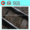 CE Certificated Superior Quality Steel Rails for Railway