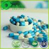 Herbal Extract Cordyceps + Astragaloside IV Capsule