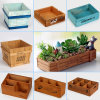 Wood Box of Grow Plants