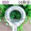 E. Galvanized DIN580 Eye Bolt Screw of Fastener
