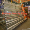 Agricultural Equipment Layer Cages for Chickens Used