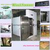 Blast Freezer (BF-4) with Copeland/Bitzer Compressor