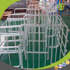 Wholesale Durable Pig Gestation Crates / Individual Stall Waiting for You