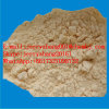 Factory Supply Algae Extract Fucoxanthin CAS 3351-86-8 for Anti-Canser