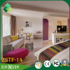 European Classical Style of Plywood Hotel Bedroom Furniture Set (ZSTF-14)