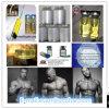 Gain Muscle Burning Fat Npp Durabolin Nandrolone Phenylpropionate 62-90-8