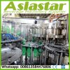 Complete Bottle Rinsing Filling Capping Plant for Carbonated Drinks Beverage