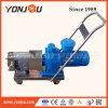 Electric Food Grade Lobe Pump, Pumps for Food Liquid, Lobe Rotor Pump, Pump High Viscosity Fluids, Material Thick Liquid Pump