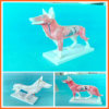Dog Acupuncture Model, Animal Acupuncture Models for Veterinarian′s Reference