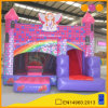 Kindergarden Inflatable Castle Combo with Bouncer and Slide (AQ708-6)
