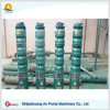Fish Pond Sea Water Stainless Steel Submersible Pump