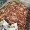 High Quality Copper Scrap/Copper Wire Scrap/Mill Berry Copper 99%