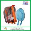 Colourful Dailyuse PVC School Bag/PVC Backpack