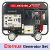 11kw Gas Generators for Villa (BVT3160)