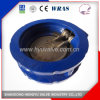 Industrial Cast Iron Wafer Check Valve with Single Plate