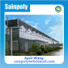 Green Shade Net Cover Material Glass Greenhouse for Mushroom