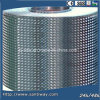 Stw 316I Stainless Steel Coil