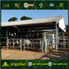 Light Steel Low Cost Cow Farm Construction Building