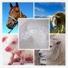 98% Pharmaceutical and Veterinary Medicine 73231-34-2 Florfenicol