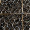 Cheap Electro Galvanized Chicken Netting