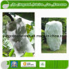 Extra Width 36m Nonwoven Fabric for Agriculture Cover