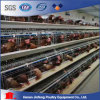 Jinfeng Automatic Battery Cage Equipment Poultry Cage with Feeding System Livestock Cage Chicken Cage