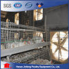 Galvanized Chicken Cage Poultry Broiler Cage Farm Equipment for Sale Batter Layer Cage
