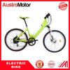 350W Electric Mountain E Bike with Hidden Battery E Fatbike
