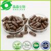China Herbal Reishi Ganoderma Lucidum Spore Powder Capsules