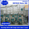 Specially for Kneya Market 30t/D Maize Processing Machinery