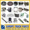 Over 500 Items Man Tga Truck Parts