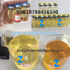 Muscle Building Steroids Finished Testosterone Enanthate Test E 400 Mg/Ml