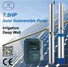 7.5HP DC/AC Deep Well Solar Pump, Irrigation Pump
