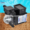 Pool Water Treatment Auto Chlorine Dosing Pump