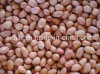 High Quality Chinese Peanut Kernels