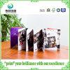 Art Paper Printing Leaflet Brochure for Exbition