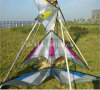 2016 Professional Delta Sport Stunt Kite