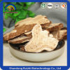 Organic Atractylodes Lancea Slices Baizhu Plant Extract