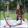 Zahrah Glass Hookah with Case Shisha All Glass Hookah