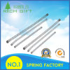 OEM Supply Extension Steel Spring with Strong Strength