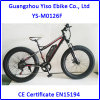 Mountain Bike Electric with Fat Tyre Wheel