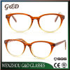 Latest New Design Inject Frame Eyewear Eyeglass Optical Nc3431