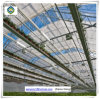 Tunnel Flower Growing Multi Span Glass Greenhouse with Hydroponic Systems