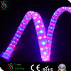 Full Copper Line Xmas LED Rope Light IP65 Outdoor Decoration