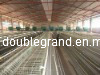 2012 Automaticprefabricate Chicken Poultry House (DG6-016)