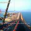 Harbor Long Distance Conveying Steel Cord Rubber Conveyor Belt