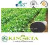 Carbon Based Compound Microbial Fertilizer