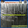 Wholesale! ! Grassland Fence / Wild Animal Fence (factpry)