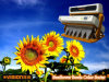 5000+Pixels, Vsee Seeds CCD Color Sorter