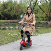 Min Electric Scooters with Lithium Battery and Brushless Motor